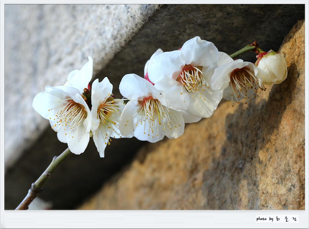 [꾸미기]IMG_0296.jpg