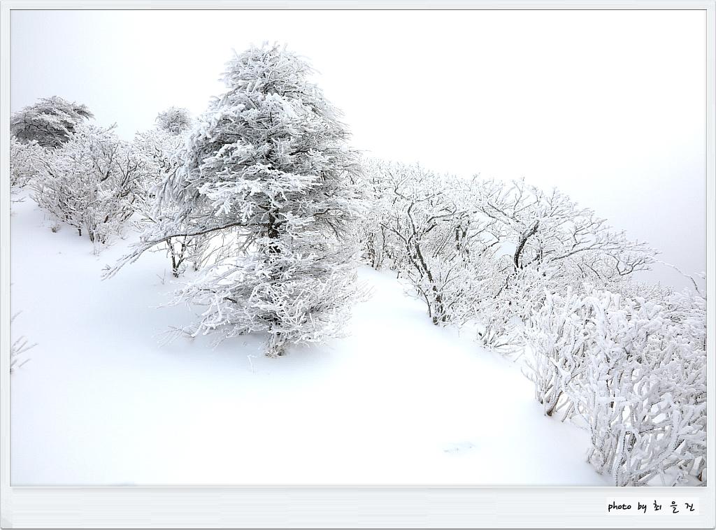 [꾸미기]IMG_0897.jpg