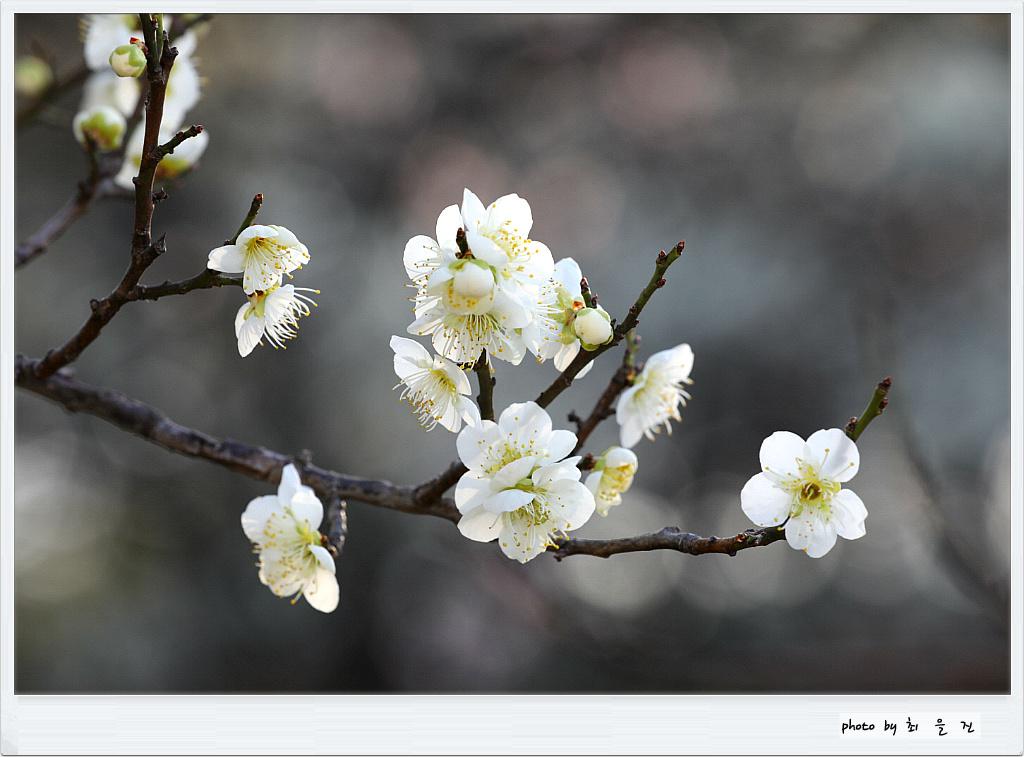 [꾸미기]IMG_0513.jpg