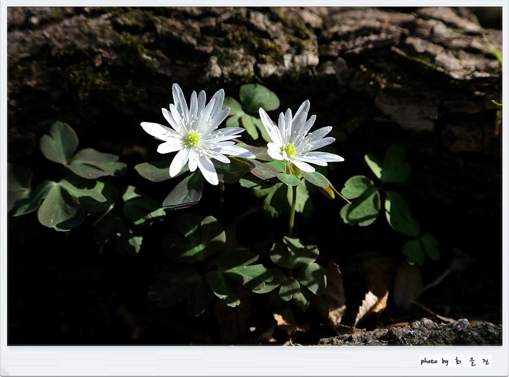 [꾸미기]IMG_0460.jpg
