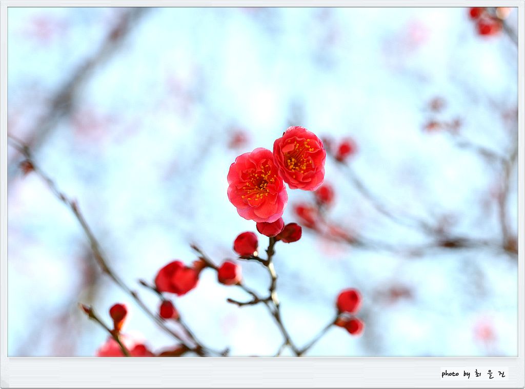 [꾸미기]IMG_0134.jpg