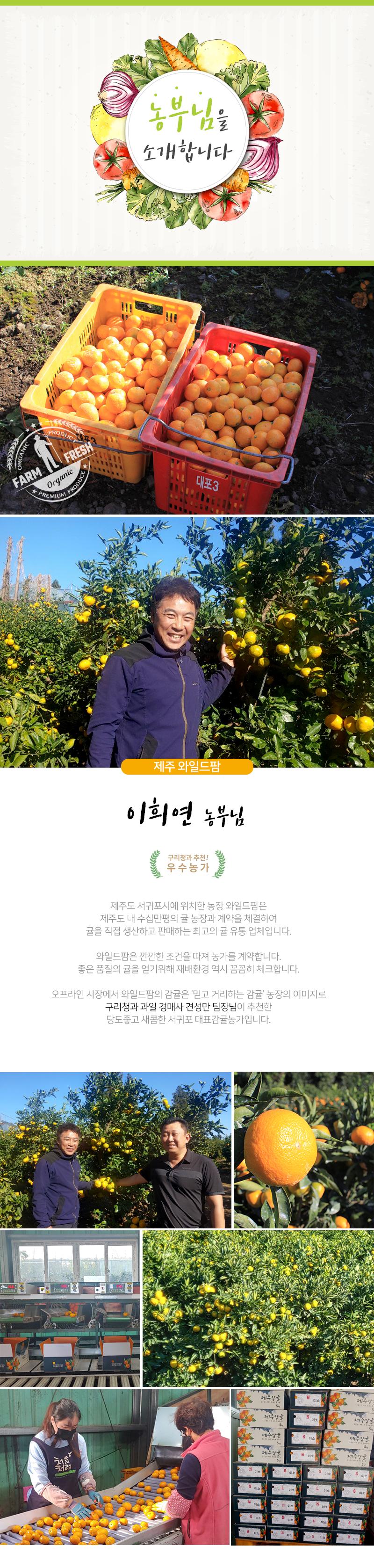 제주감귤_와일드팜_이희연.jpg